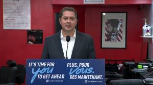 Federal Election 2019: Scheer vows to eliminate $1.5B in 'handouts to wealthy shareholders and foreign companies'