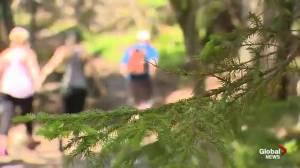 Hiker Challenge Launch