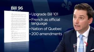 Concerns grow over impact of Bill 96 on the English language in Quebec (01:48)