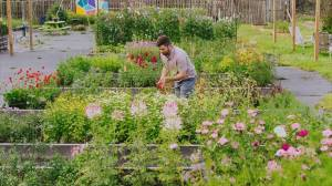 Decorating ideas using local flowers from Birchwood Meadows Farm (04:49)