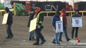 Saskatchewan government, industries share concerns as CN Rail workers strike