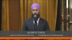 Singh questions reported shortages of flu shots, Trudeau says record numbers 'coming out for' vaccine (01:04)