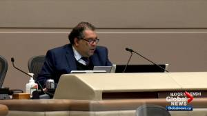 Calgary city council hears from public as budget deliberations get underway (01:50)