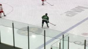 Saskatoon Stars veterans return for playoff push
