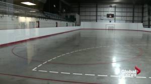 Edmonton building 2 new indoor sports fields (01:59)
