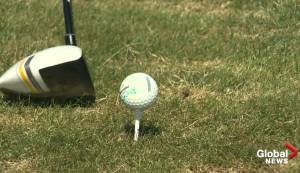 Alberta Golf hoping to attract more kids to 'Youth on Course' affordable golf program