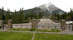 Seven $1,200 tickets given to Americans who hiked in Banff National Park in past week: RCMP (02:55)