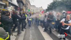 COVID-19: Thousands stage Paris protest against Macron's health pass, police present (03:21)