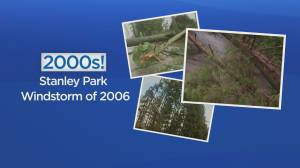 Global BC at 60: Impact of 2006 Stanley Park windstorm (02:18)