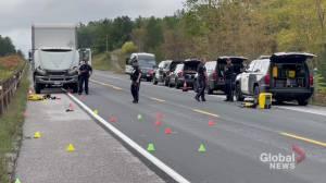Pedestrian struck by truck on County Road 28 (00:35)