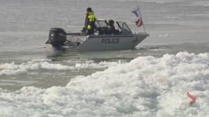Peacock Point, south of Hamilton, recovery effort resumes after boy swept into Lake Erie