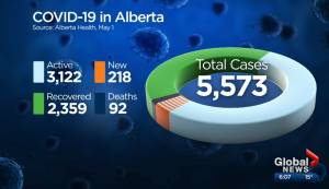 What Alberta is learning about COVID-19 as cases continue to mount