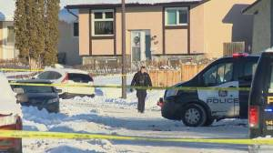 Homicide unit investigating 'targeted shooting' after 2 bodies found in car in Calgary (02:06)