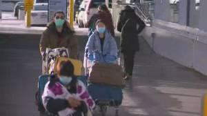 Ottawa considers tougher measures to discourage pandemic travel (04:01)