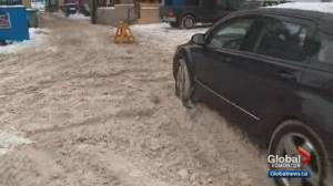 South Edmonton business worries snow is not being removed from out front