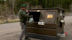 'Piled in heaps': Large amounts of garbage found in Kananaskis by parks officials (01:53)