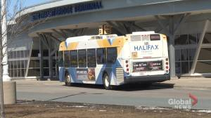 Halifax Transit union wants safety concerns addressed