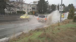 Heavy rains cause flooding around Metro Vancouver