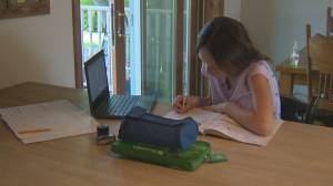 White Rock dad says B.C. government is not doing enough to ensure a safe return to school