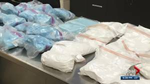 2 people charged after Edmonton police seize almost $300K in drugs including carfentanil (01:26)
