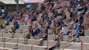 Fans return to stands in Saskatchewan as COVID-19 restrictions lifted (01:52)
