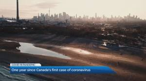 Canada marks 1-year anniversary of first COVID-19 case (02:33)