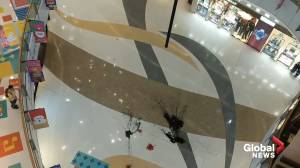 Black paint, Christmas flowers thrown from balcony in Hong Kong mall during protests