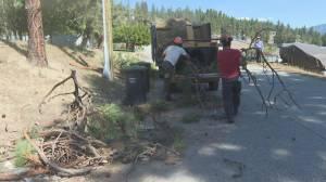 FireSmart wildfire mitigation work gets underway in Peachland
