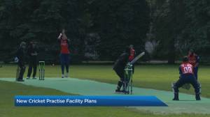 New cricket facility planned for northeast Calgary (03:54)