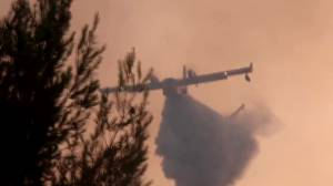 Europe wildfires: Hundreds of firefighters continue to battle blazes in Greece, Turkey (01:22)
