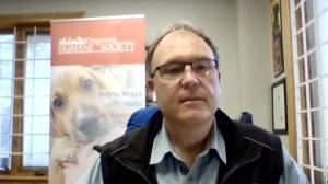 "The Kingston Humane Society launches ""Big Paws Across Canada– The Return Trip"" (05:56)"