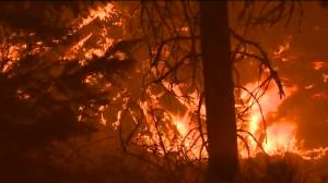 California's Dixie Fire continues to grow into 13th largest wildfire in state history (01:19)