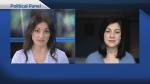 Political Panel: April 19