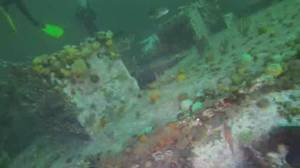 Divers hope to turn derelict ship into artificial reef