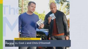 LL Cool J and Chris O'Donnell talk 'NCIS: Los Angeles' Season 12 (04:47)