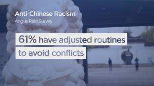 New survey reveals rampant anti-Chinese racism (01:55)