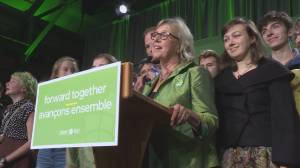 Green Party performance doesn't live up to expectations