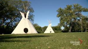 Teepees erected in Wascana Park in solidarity with Walking With Our Angels