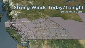 Labour Day weather statement in effect for B.C. south coast (00:56)