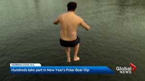 More than 200 people took part in the Herring Cove polar bear