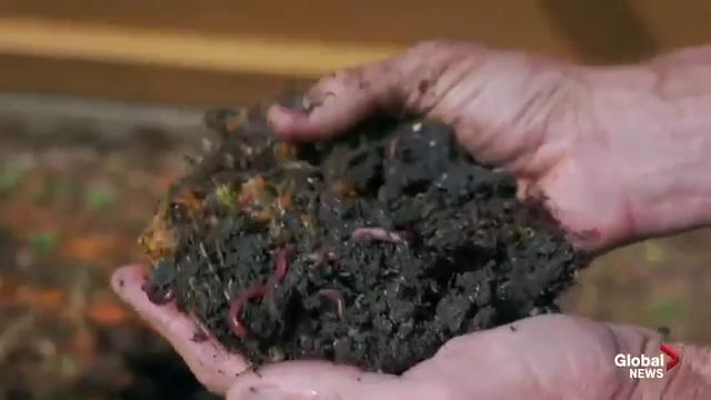 Executive producer of 'The Need To GROW' film and the importance of farmable soil