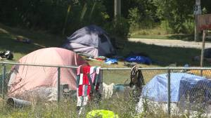 'Camping at Belle Park is no longer allowed,' says notice handed out by Kingston CAO (01:36)