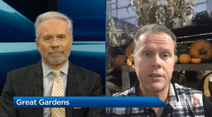 Great Gardens: Late fall tips for your yard (04:31)