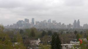 Snow, cold return to Calgary ahead of May long weekend (01:27)
