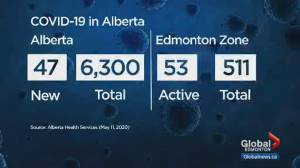 2 additional COVID-19 deaths in Alberta, Hinshaw 'encouraged' by fewer daily cases