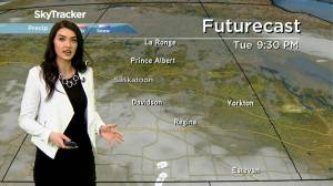 Saskatchewan weather outlook: Jan. 13