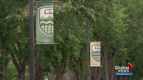 Thousands of support staff laid off from the University of Alberta   Watch News Videos Online