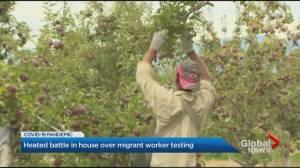 Coronavirus: Heated battle at Ontario legislature over migrant worker testing