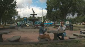 Edmonton BIPOC city council candidates share experiences on the campaign trail (01:47)