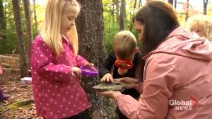 Nova Scotia completes roll-out of universal pre-primary program (01:57)